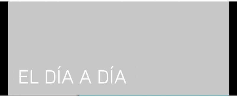 fullportdia